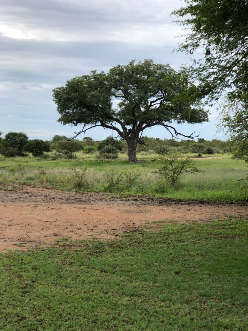 6 Bedroom  Farm for Sale in Lephalale - Limpopo