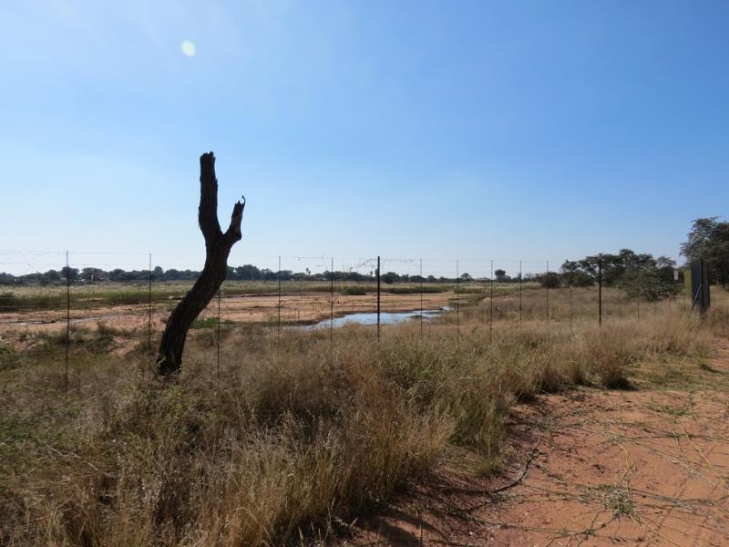 0 Bedroom  Vacant Land for Sale in Lephalale - Limpopo