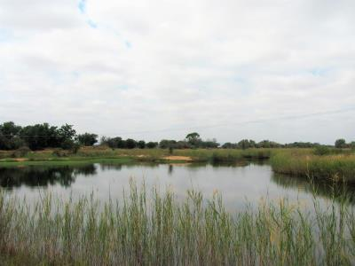 Farm for Sale in Lephalale, Lephalale - Limpopo